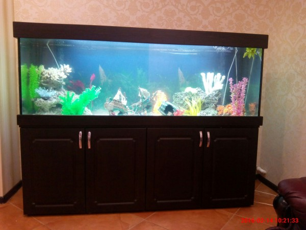 Новые серии аквариумов ЯрГласс. - IMG_20160214_102133.jpg