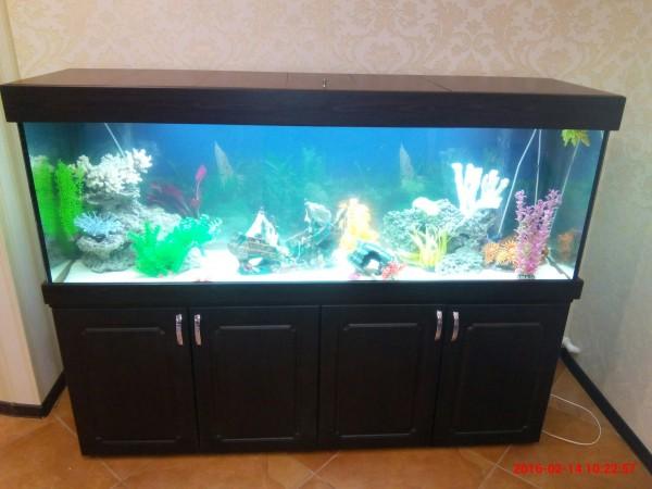 Новые серии аквариумов ЯрГласс. - IMG_20160214_102257.jpg