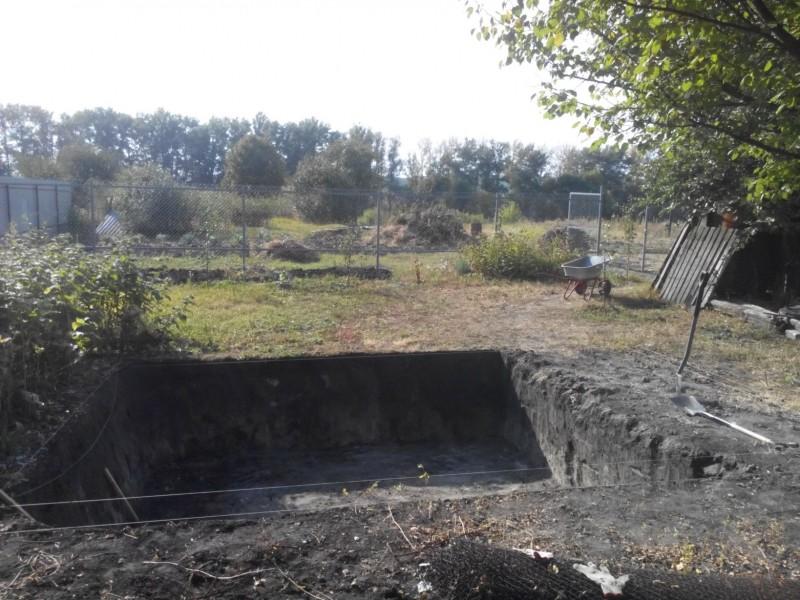 Мой пруд (Белгородская область) - IMG_20150917_152117.jpg