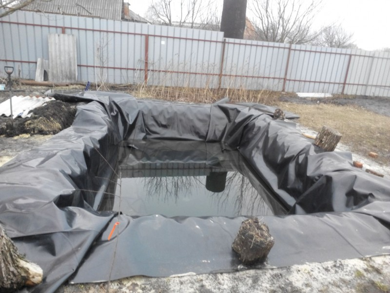 Мой пруд (Белгородская область) - IMG_20160306_163012.jpg