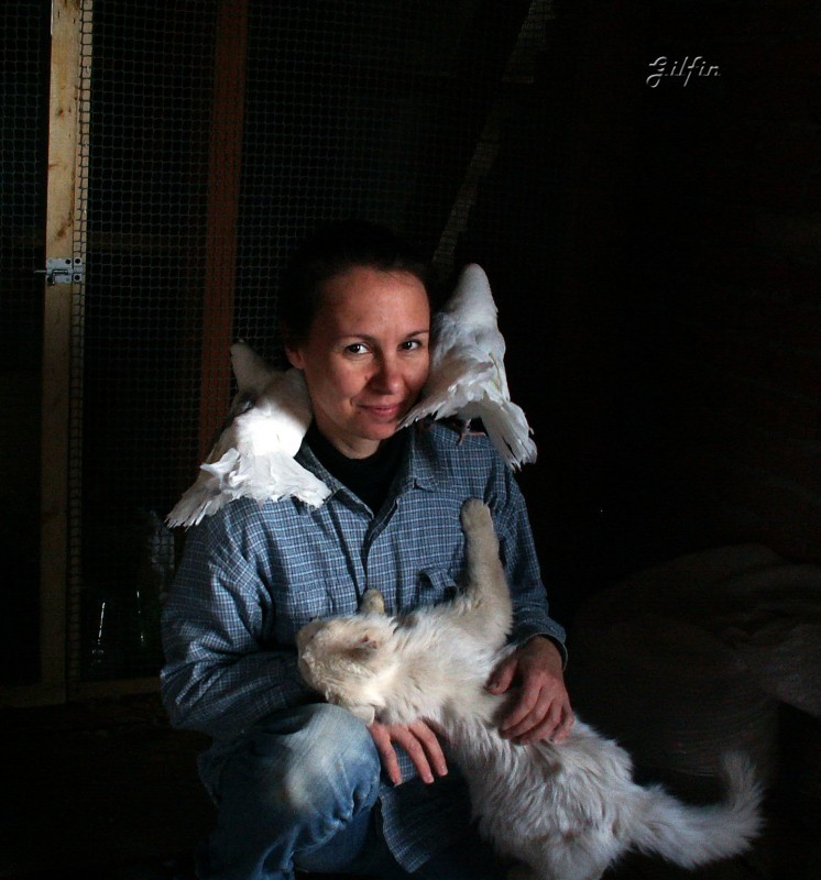 Кто нибудь голубей держит? - PICT3710 copy.jpg