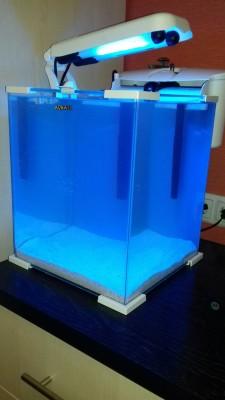 Сегодня засолила кубик 30л.акваэль!!! - image-0-02-05-cde1f9844673d4545295bd033f0d05dda68d6ccea7b72143f7c23e22d41fca1b-V.jpg