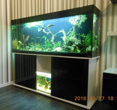 Заказ аквариума - DSCN5662.JPG