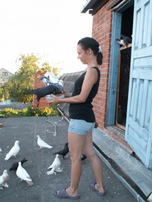 Кто нибудь голубей держит? - image3.jpg
