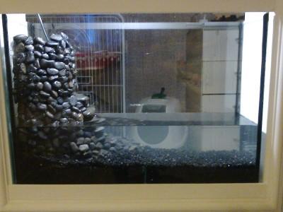аквариум в нише. - фото0446.jpg