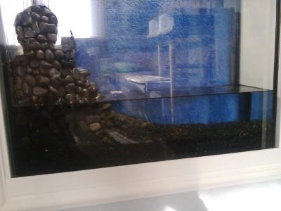 аквариум в нише. - фото0452.jpg
