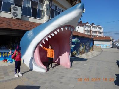 Дайвинг с дельфинами. - DSCN1046.JPG
