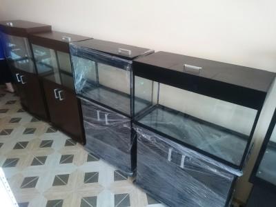 г.Армавир зоомагазин Бетховен - аквариум Аква-Юг -1.jpg