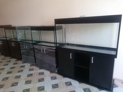 г.Армавир зоомагазин ХХХ - аквариум Аква-Юг 2.jpg