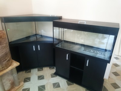 г.Армавир зоомагазин Бетховен - аквариум угловой 1.jpg