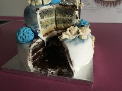Мои тортики !!! - IMG_2248.JPG