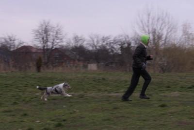 гопник и тыгыдымский пёс - 016.JPG