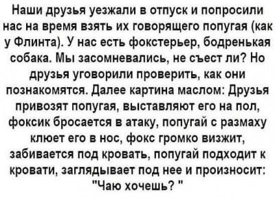 ЮмАр - FB_IMG_1520536201332.jpg