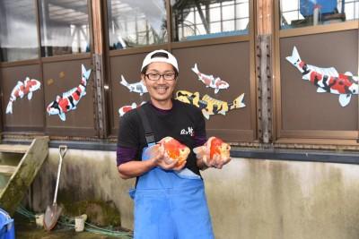 Есть такие рыбки Сабао и Тамасаба - 14714825_1189672207737471_1434147546111504164_o.jpg