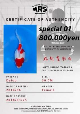 Есть такие рыбки Сабао и Тамасаба - 29543110_1684782758269728_1875705304949794271_n.jpeg
