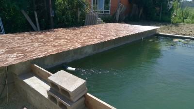 Как я построил современный пруд - P70712-124419.jpg