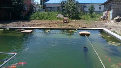 Как я построил современный пруд - P70712-124359.jpg