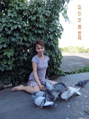 Кто нибудь голубей держит? - DSCN1796.JPG