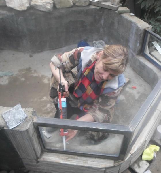 Мини аква-пруд (Адлер) - SAM_8669...jpg